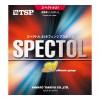 Spectrum · 21 sponge