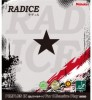 RADICE